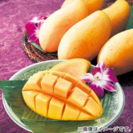 とろける甘み タイ産フレッシュマンゴー